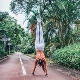 做手倒立锻炼身分str的健身妇女背面图 图库摄影