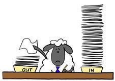 做文书工作的办公室绵羊 库存照片