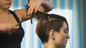 做时髦的理发的女商人 专业美发师 影视素材