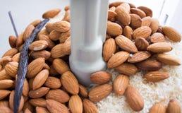 做杏仁在食品加工器的椰子油 免版税库存照片