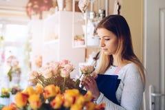 做构成的花店少妇店主桃红色玫瑰 免版税库存照片