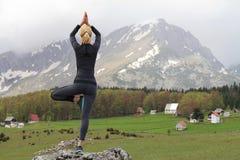 做树姿势的瑜伽妇女 凝思和平衡在美好的自然山风景行使 库存图片