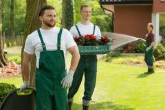 做每个后院杰作的庭院英雄 免版税库存照片