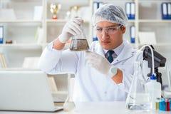 做水质测试污秽expe的年轻研究员科学家 图库摄影