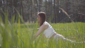 做瑜伽健身的画象健康俏丽的妇女舒展在森林壮观的自然 华美的优美的招标 股票视频