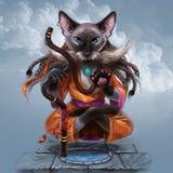 做瑜伽和漂浮在天空中的猫 皇族释放例证