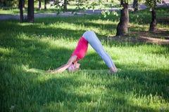 做瑜伽在公园,活跃生活方式的可爱的妇女 健康生活方式和活跃休闲的概念 免版税库存图片