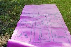 做瑜伽的一个小组青年人 库存照片