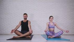 做瑜伽的夫妇在演播室 免版税库存图片