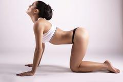 做瑜伽的美丽的女孩 免版税库存图片