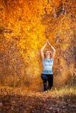 做瑜伽的美丽的妇女户外在秋天 免版税图库摄影