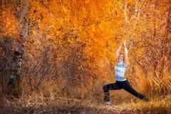 做瑜伽的美丽的妇女户外在秋天 库存图片