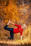 做瑜伽的美丽的妇女户外在黄色叶子 库存图片
