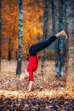 做瑜伽的美丽的妇女户外在黄色叶子 免版税图库摄影