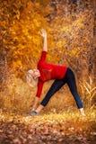 做瑜伽的美丽的妇女户外在黄色草 免版税库存图片