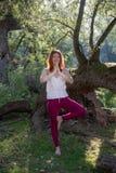 做瑜伽锻炼用手的年轻可爱的红发性感的姜妇女在一条腿本质上在运动服的在阳光下 库存图片