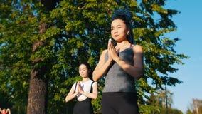 做瑜伽锻炼的两名年轻可爱的妇女在公园-一名妇女有长的蓝色dreadlocks 股票录像