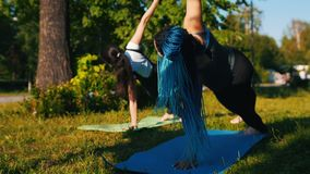 做瑜伽锻炼的两年轻女人在公园-一名妇女有长的蓝色dreadlocks 股票视频