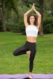 做瑜伽锻炼的微笑的俏丽的妇女 图库摄影
