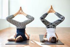 做瑜伽asana一定的角度shoulderstand的两个少妇摆在 免版税库存照片