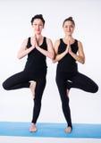 做瑜伽asana树的两个少妇摆在Vrikshasana隔绝在白色背景 免版税库存照片