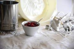 做白色圣诞节甜蛋白甜饼用石榴 免版税库存照片