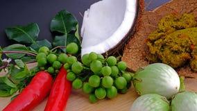 做的著名泰国绿色咖喱成份 库存图片