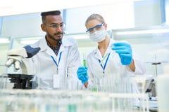 做研究的科学家对医学实验室 库存照片