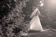 做竖趾旋转的新娘在公园 免版税库存图片