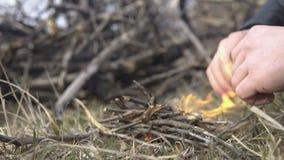 做篝火的人的手在早期的春天或秋天自然 股票视频