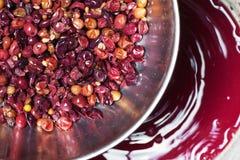 做红葡萄酒 过滤的红葡萄酒 库存照片