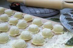 做自创饺子、馄饨或者饺子的逐步的过程 库存照片