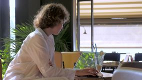 做自由职业者的概念 旅行的和运作的背景 有坐在桌上的手提电脑的妇女 工作和 股票视频