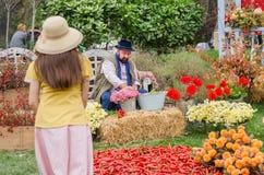 做花花束的花匠在五颜六色的庭院里在每年节日期间 免版税图库摄影