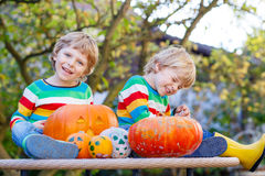 做起重器o灯笼的两个小兄弟姐妹男孩为在a的万圣夜 免版税库存图片