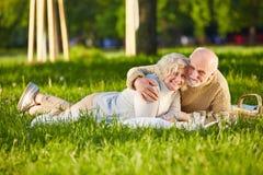 做野餐的愉快的资深夫妇在公园 库存图片