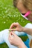 做雏菊链环的女孩 免版税库存图片
