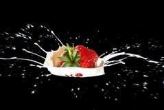 做飞溅草莓 库存图片