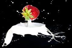 做飞溅草莓 库存照片