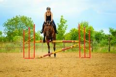 做马的骑师女孩跳跃通过障碍 库存图片