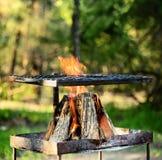 做braai或烤肉的营火 库存图片