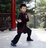 做wushu的中国男孩在公园 图库摄影