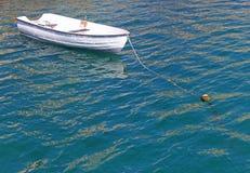 停住在绿色水中的白色划艇 库存照片