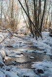 停放与一棵冻河和积雪的树在日出光 库存照片