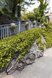 停放在爬行常春藤盖的石墙旁边的小径的两辆自行车 免版税库存图片