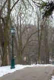 停放有绿色街灯和光秃的树的胡同 33c 1月横向俄国温度ural冬天 有空的道路的斯诺伊森林 图库摄影