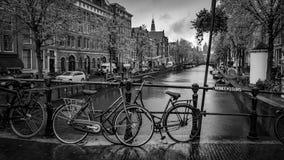 停放的自行车有Nutural湖视图 免版税图库摄影