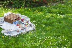 停放野餐 有花、格子花呢披肩和一个瓶的一个绿色草甸酒 浪漫晚餐本质上 在的春天 免版税图库摄影