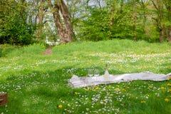 停放野餐 有花、格子花呢披肩和一个瓶的一个绿色草甸酒 浪漫晚餐露天 免版税库存照片