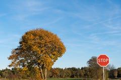 停止交通标志一个色的风景 库存图片